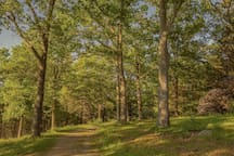 Hike in Maudslay State Park - a short drive away from the cottage.