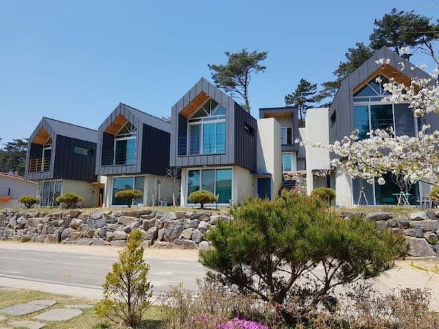 10평형 전경(The view of 10 acreages type house) One house has two rooms.