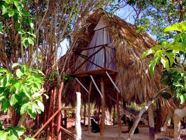Hotel El Cabito