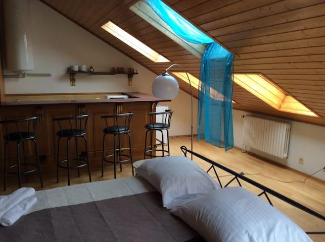 Two floors in mini-hotel Lev i Sova - Praga - Bed & Breakfast