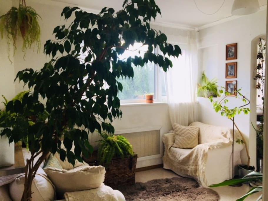 Cozy furniture