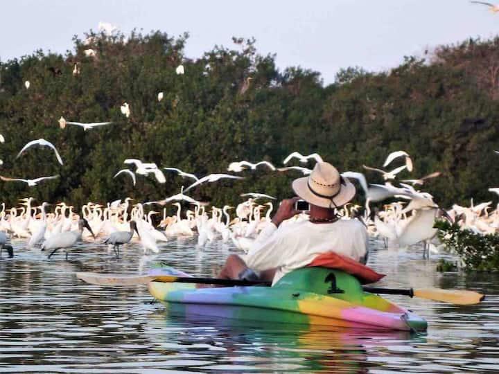 Blanca 🏖 Paraíso con 2 albercas 20 pasos a playa