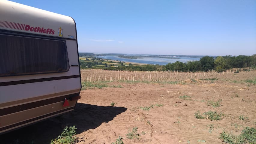 Camber in Nature with view over Danube