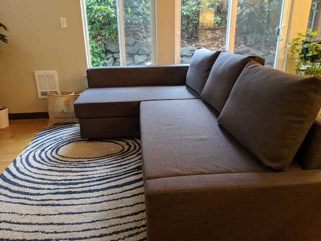 Sectional couch with a pull-out bed. Bought in Sep '19, very new!
