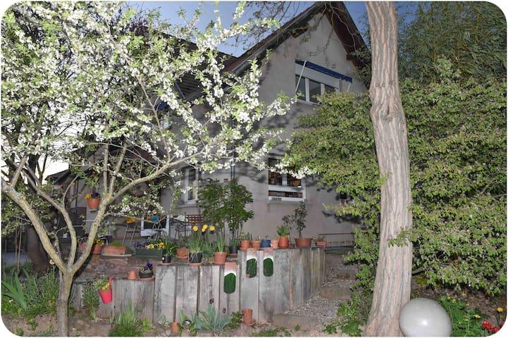 Belle maison avec grand jardin - Estrasburgo - Casa