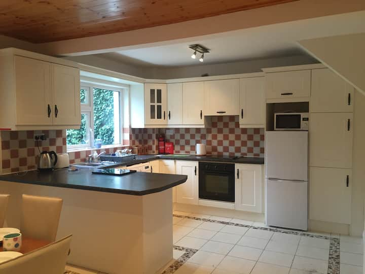 Bright, spacious house in Galway city