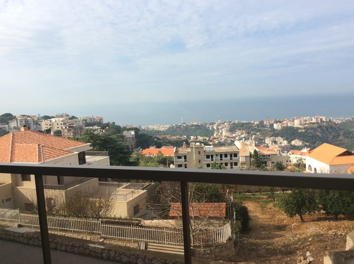 Shared apart in Jeita with view