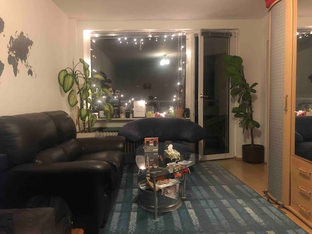 Cozy Furnished Apartment Close to City Center