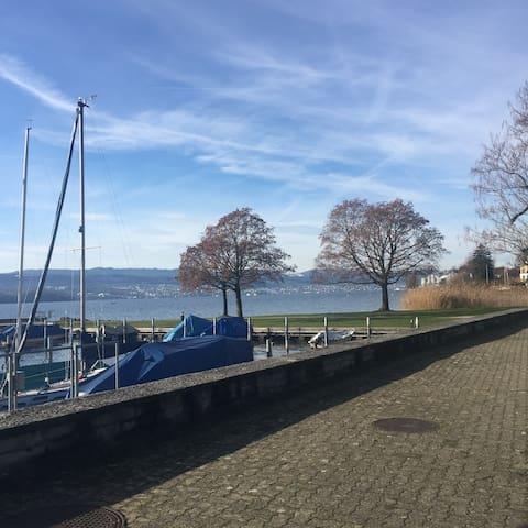 Swiss Zurich chalet charm off the Golden Coast
