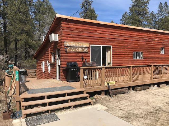 Ore-Belle Cabin in down town Crown King AZ