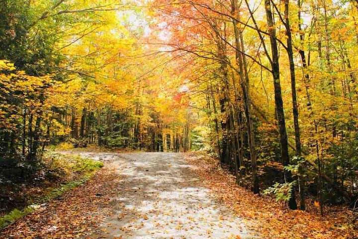 Paula's Silver Lining 🍁 A Romantic Autumn  Getaway