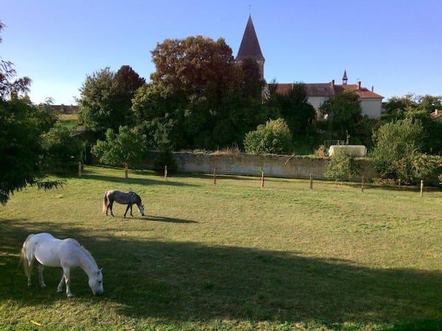 Gazelle et Violette