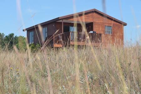 Alto Log Cabin