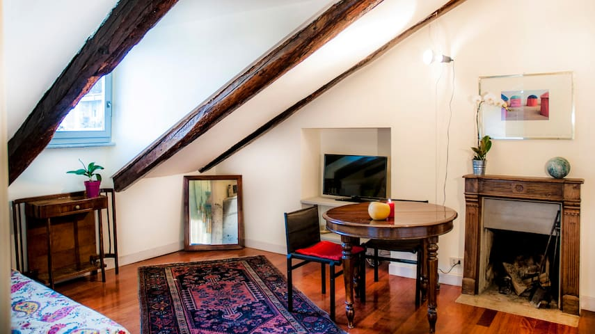 Penthouse in Turin - Turijn - Appartement