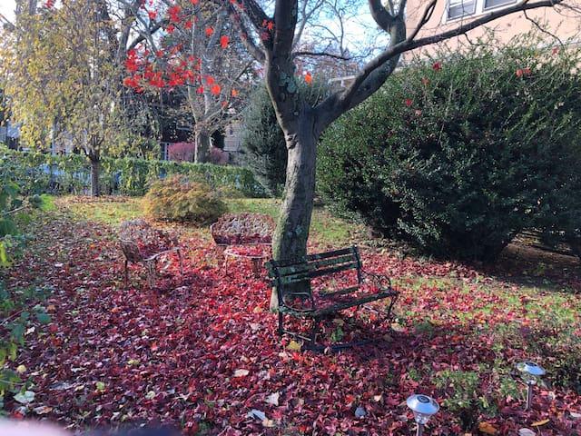 House garden style - Fall
