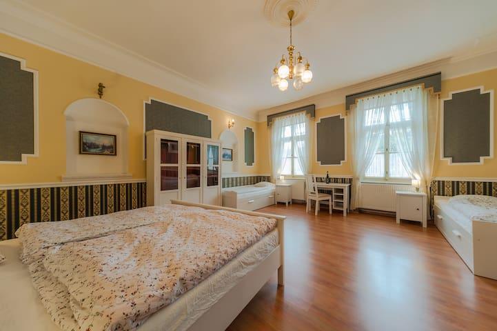 Vinařský apartmán Veltlín, Znojmo - Znojmo - Byt