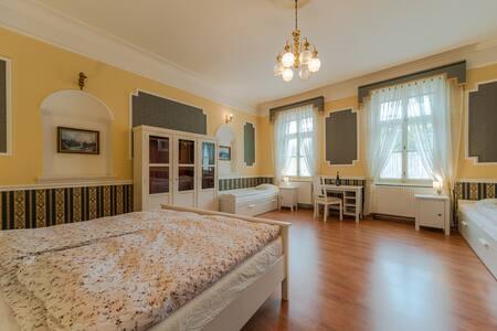Vinařský apartmán Veltlín, Znojmo - Znojmo