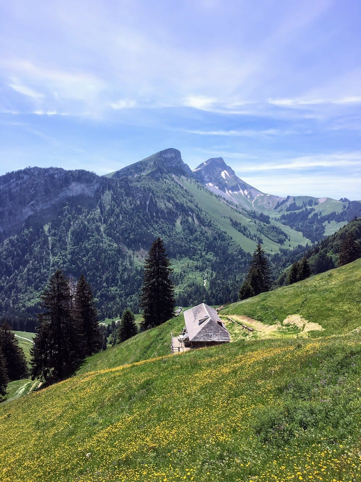 Alpine chalet, more experience than accommodation