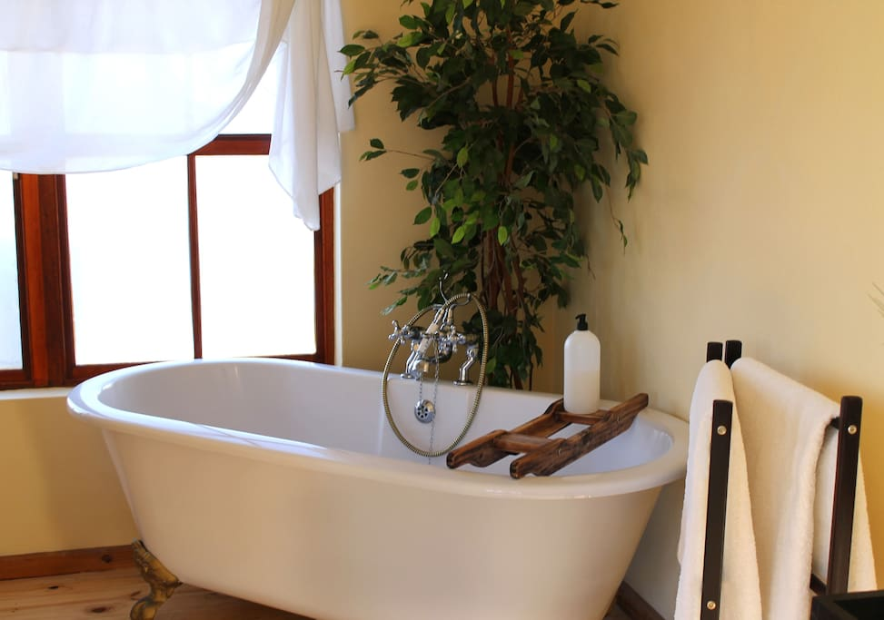 Large Victorian style bath