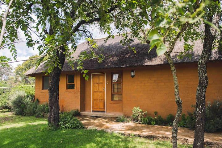 WildThingz Lodge - Polokwane - Natuur/eco-lodge