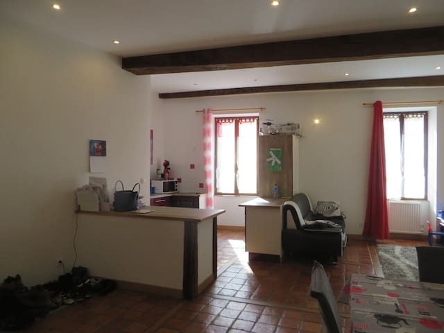 T3 centre Cluny - Cluny - Apartment