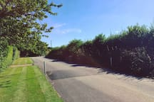 A view of the private road, plenty of good walking routes on your doorstep!