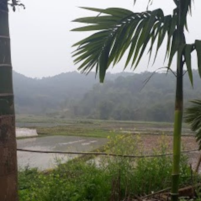 The scenery of the village is peaceful.