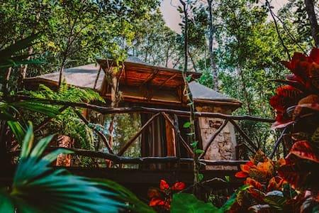 San Carlos Mayan Resort, cabañas ecológicas.