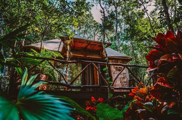 cabañas ecológicas, bungalows