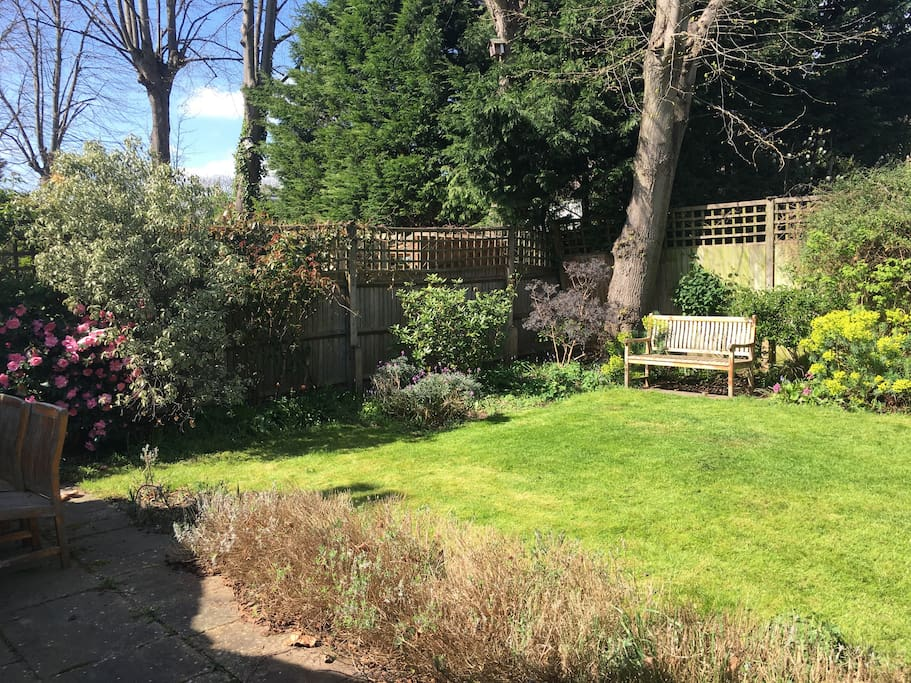 Lovely garden and large living space