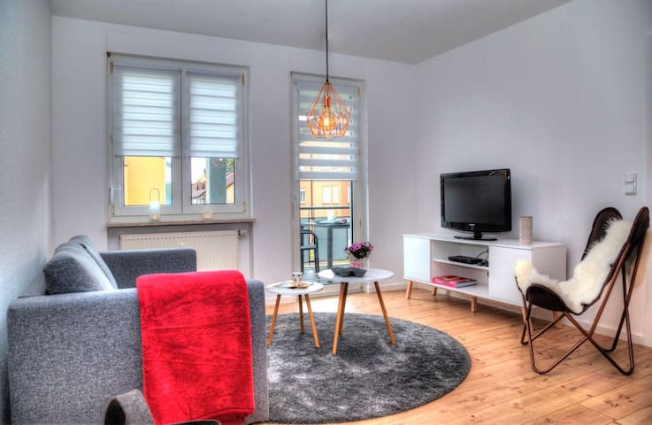 Business Apartment 9 close to Basel & France