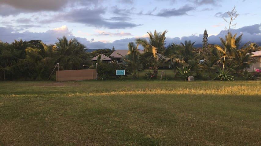 Aujourd'hui, quand vous arriverez par la piste sablonneuse de la plage, voici Poé Côté Lagon caché dans la végétation tropicale.