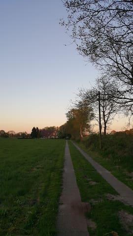 Fewo Alleinlage Nordsee Hund Fahrrad  Küste