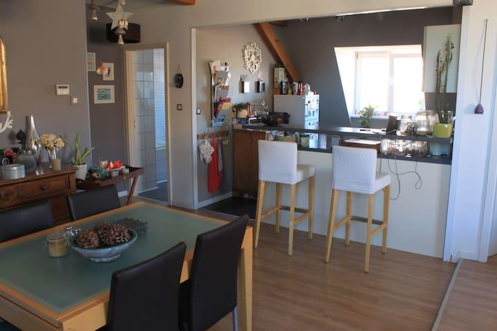 BEL APPARTEMENT TOUT CONFORT AVEC PARKING - Soultz-Haut-Rhin - Apartamento