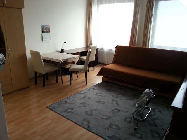 Schöne helle Wohnung in Stadtmitte - Karlsruhe - Apartment