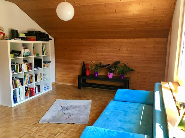 Very nice centrally located room - Lucerne - Apartamento