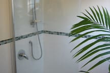 Bath and shower in the main house..