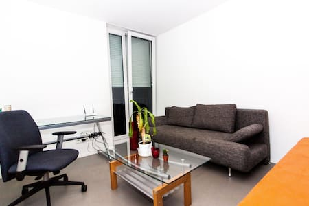 Flat in perfect Location Paradise - Konstanz - Apartment