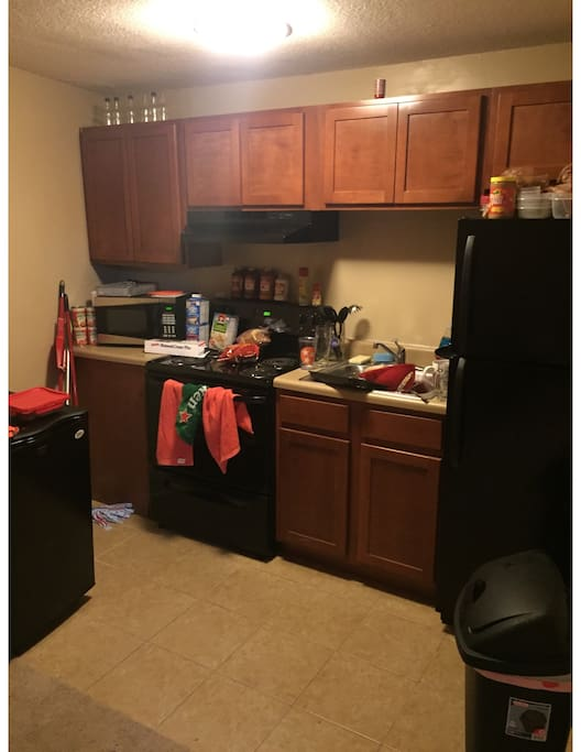 1 Bedroom Apartment Between Downtown And Neyland Apartments For Rent In Knoxville Tennessee