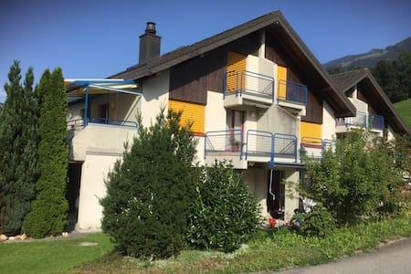 Beautiful Swiss mountain and lake apartment