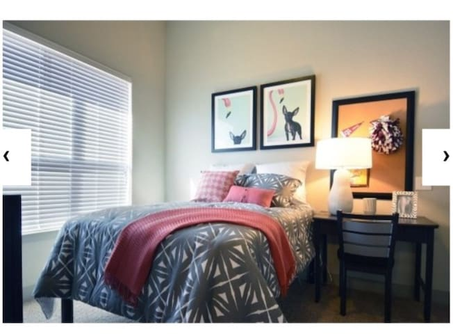 Apt on northgate - College Station - Apartment