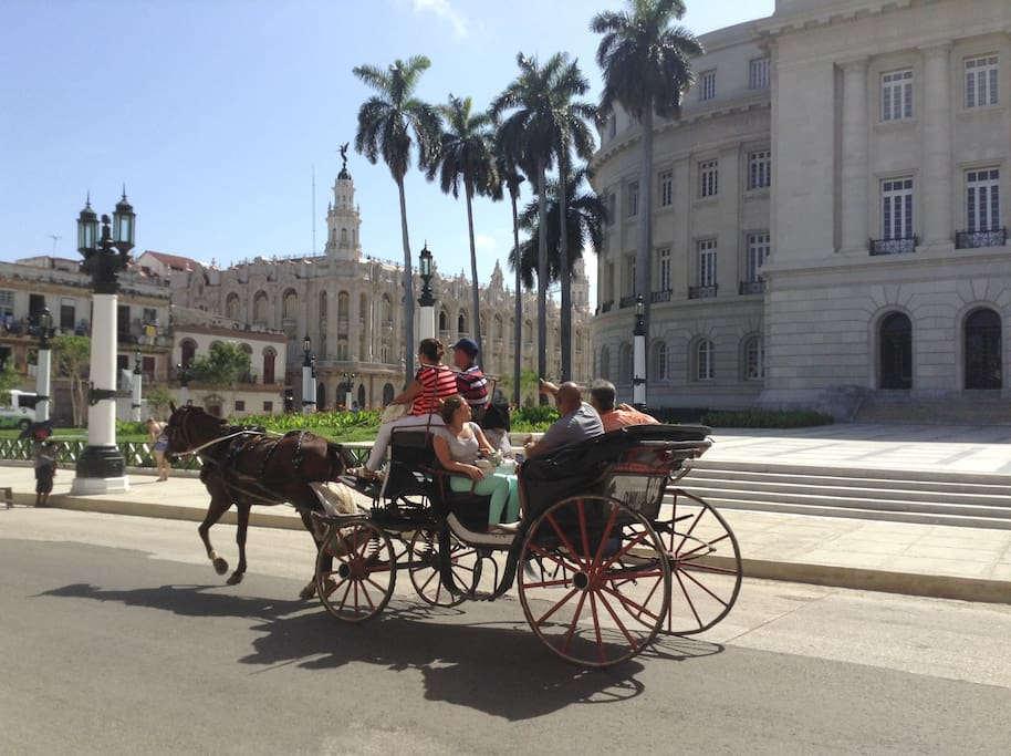 Carriage for strolling the city