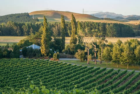 Opihi Vineyard Guest Accommodation