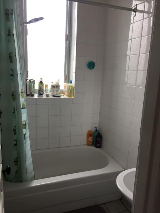 Salle de bains/Bathroom