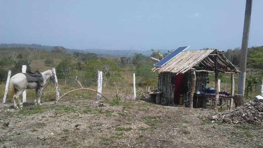 Eco-friendly Palapa Hut overlooking Xunantunich