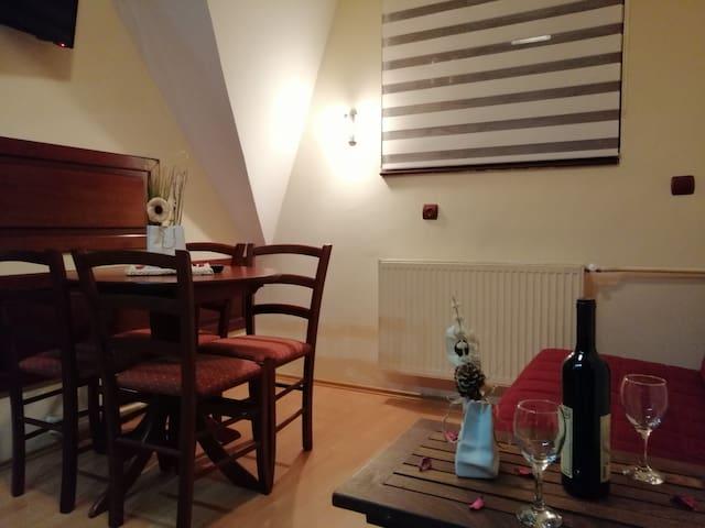 """Apartment """"Lavina"""" Kopaonik, Vila Nikola"""