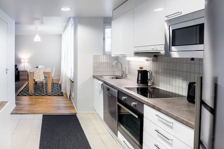 New Two Bedroom Apartment in the Center (R10b55) - Helsinki