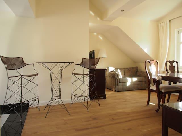 Luxurious & spacious apartment DG - Königstein im Taunus - Daire