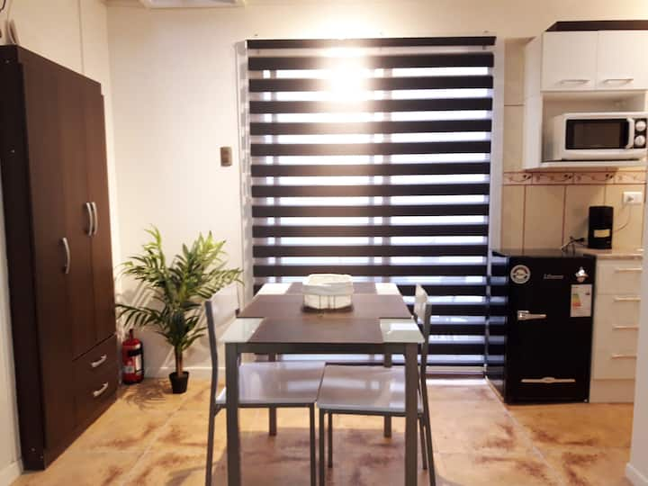 "Furnished appartment downtown. Near ""La Moneda"""
