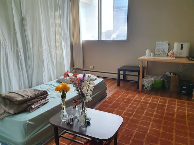 the apartment in heart of downtown